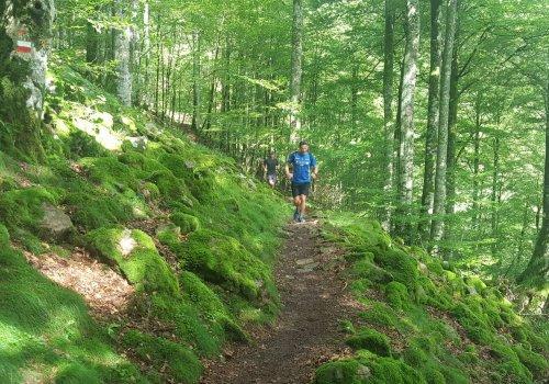 Edu-Trail - Initiation au Trail